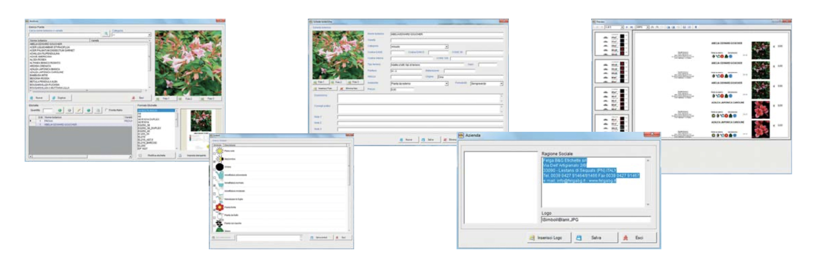 Felga-Print-Label-Etikettendruckprogramm