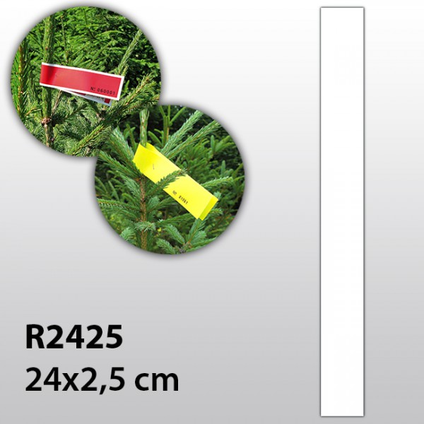 Weihnachtsbaum-Etiketten R2425P